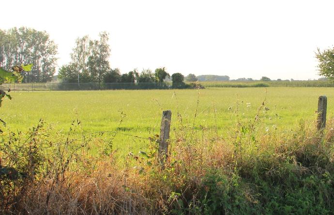Locatie toekomstige KMO-zone in Rummen